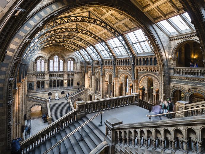 Museu de Historia Natural, Londres