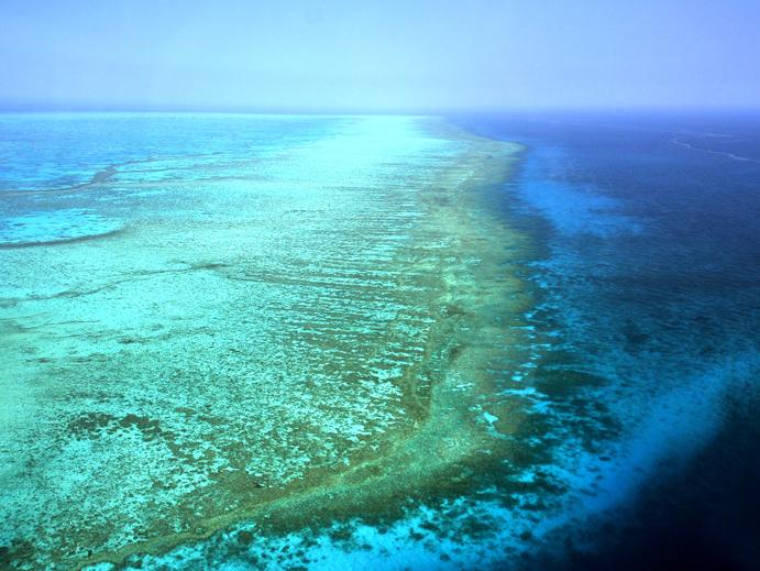 Grande barreira de corais, australia