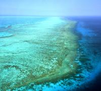 Barreira de Coral, Australia